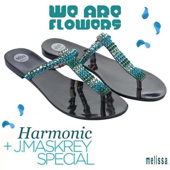melissa nation harmonic