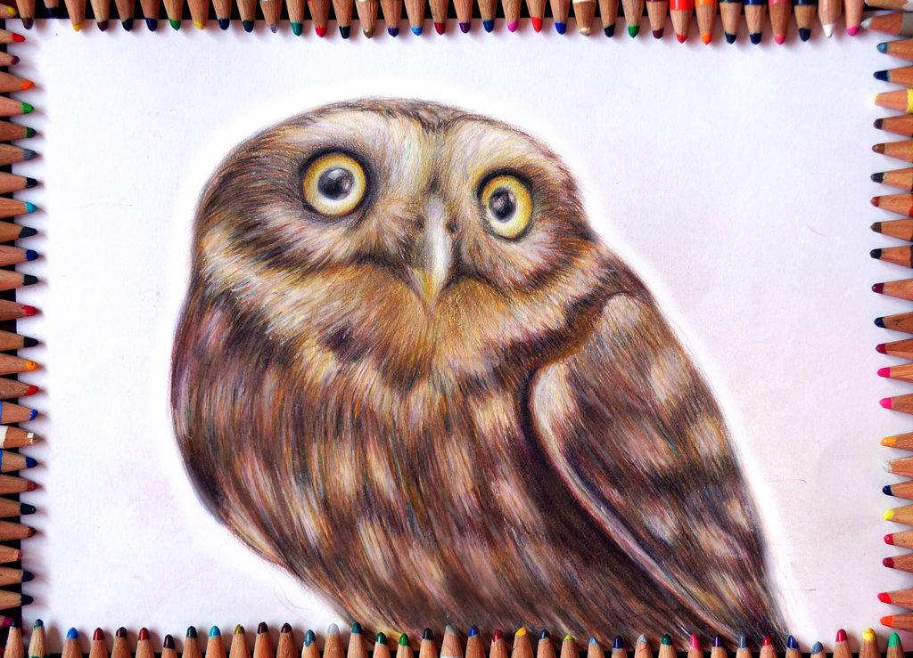 the_owl_by_alena_koshkar-d7iua3w